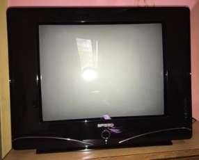 Televisor Speed de 21 pulgadas