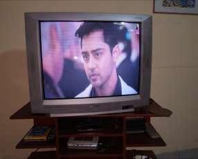 TV Toshiba color stream 29 pulgadas