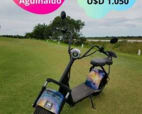 Eco moto eléctrica Volt