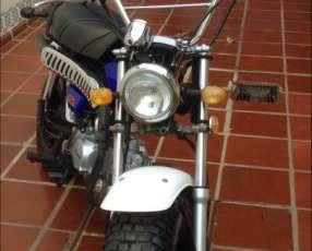 Skyteam T Rex 125 cc