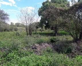 Terreno en Limpio zona Abasto Norte