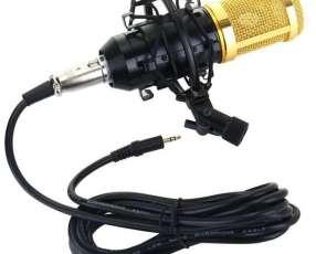 Micrófono Condensador BM800