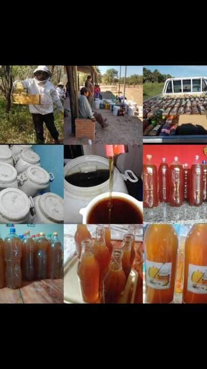 Miel de Abeja pura del Chaco - 1
