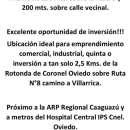 Terreno de 2 hectáreas en Coronel Oviedo - 0