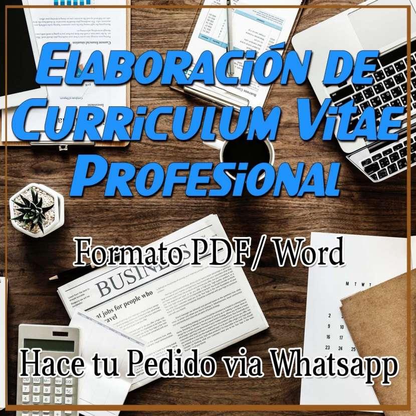 Elaboración de currículum vitae profesional - 0