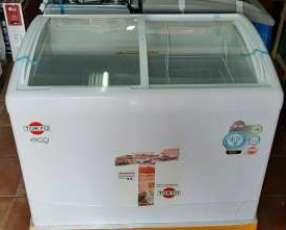 Congelador tokyo para helado de 350 litros