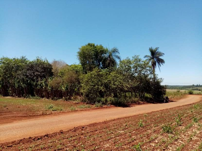 Lote de 5 hectáreas en Km 37 - 0