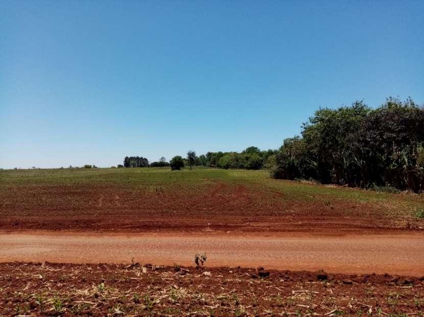 Lote de 5 hectáreas en Km 37 - 1