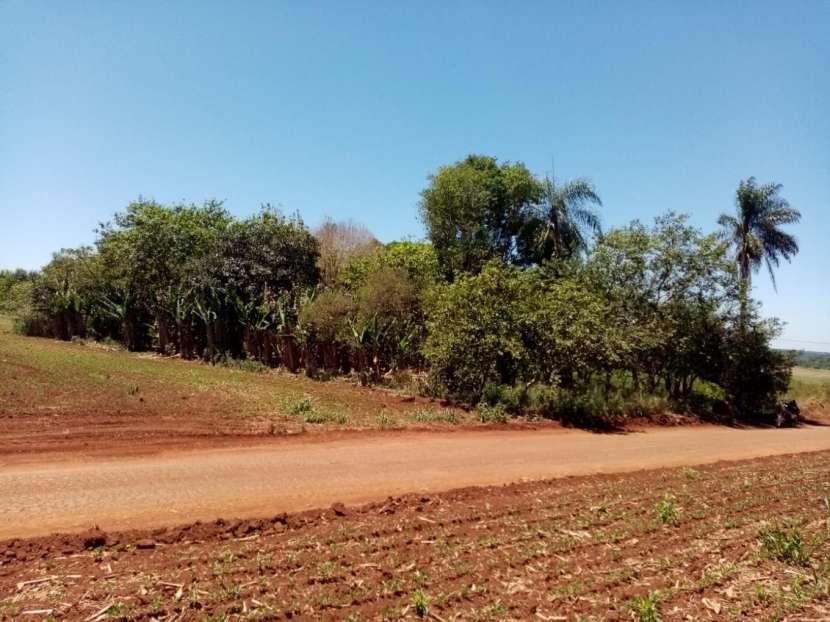 Lote de 5 hectáreas en Km 37 - 5