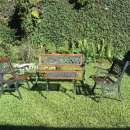 Juego de jardín rosita madera y hierro - 1