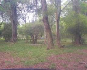 Terreno de 7 hectáreas en Limpio