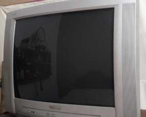 TV Philips 29 pulgadas