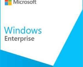 Software microsoft windows enterprise sngl assurance olp nl