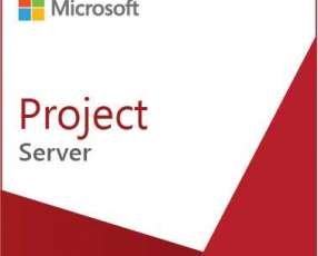 Software microsoft project server 2016 sngl olp nl y licencia