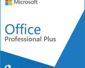 Software microsoft office pro plus 2019 olp nl gov y licencia
