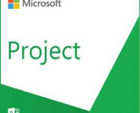 Software microsoft project pro 2019 sngl olp nl