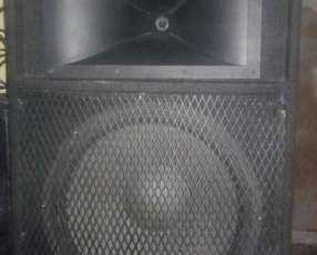 Amplificador Mega sonic