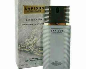 Perfume Ted Lapidus (Masculino)