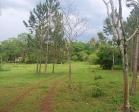5 hectáreas en San Cosme y Damián