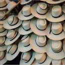 Sombrero lagomarisno - 0
