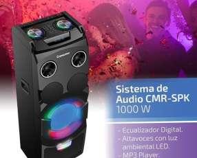 Sistema de audio Consumer