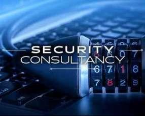 Consultora de seguridad electrónica