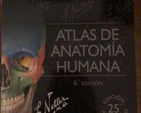 Atlas de Anatomía Humana de Netter