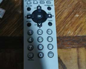 TV Panasonic 29 pulgadas
