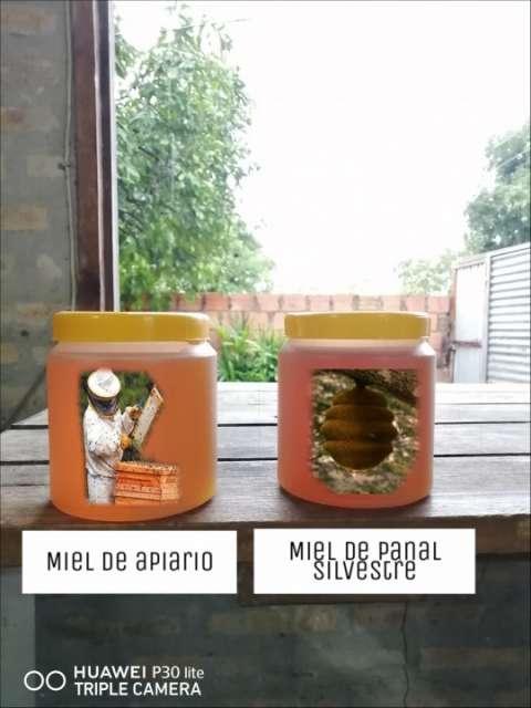 Miel pura del chaco paraguayo