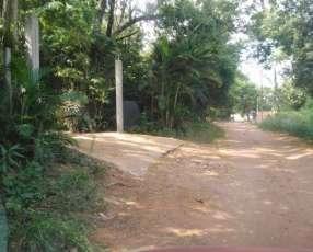 1 hectárea Ypané zona centro