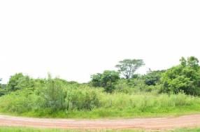 Terreno 9000 m2 en Caacupé