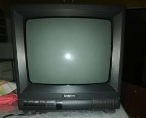 Televisor Phillips y Broksonic