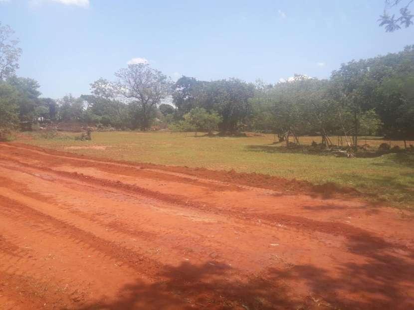 Terrenos a 50 metros de asfalto de Luque samber - 2