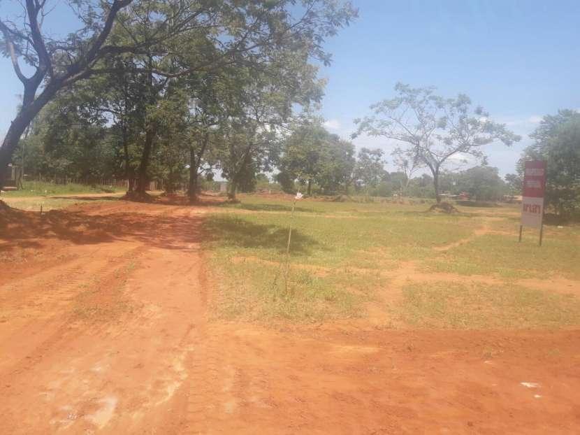 Terrenos a 50 metros de asfalto de Luque samber - 5