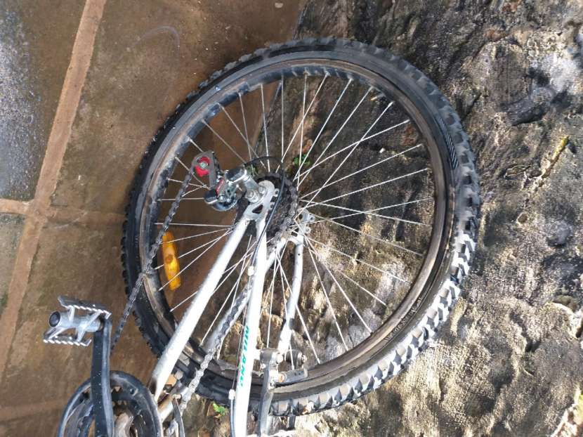 Bicicleta - 7