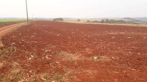 Campo de 50 hectáreas en Naranjito Itapúa
