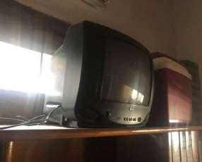 TV LG de 14 pulgadas