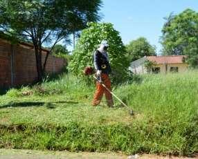 Servicio de limpieza de terrenos y patios baldíos