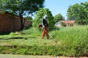Servicio de limpieza de terrenos patios baldíos y poda de árboles
