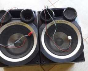 Parlante Panasonic Super Woofer original L y R
