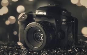Cámara Canon 80D kit 18-55