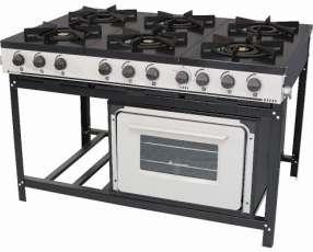 Cocina industrial 6 hornallas con horno Venancio Bravo