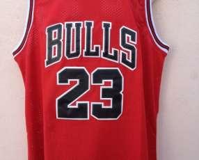 Camisilla de NBA Chicago Bulls Jordan 2019