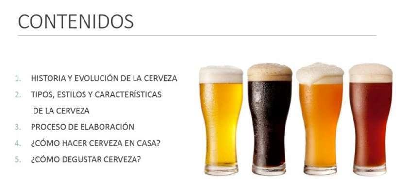 Cerveza artesanal emprendimientos desde casa - 1
