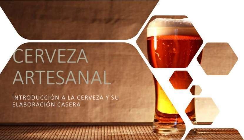 Cerveza artesanal emprendimientos desde casa - 0