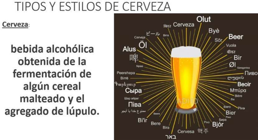 Cerveza artesanal emprendimientos desde casa - 2
