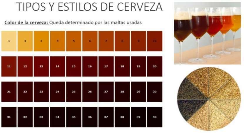 Cerveza artesanal emprendimientos desde casa - 3