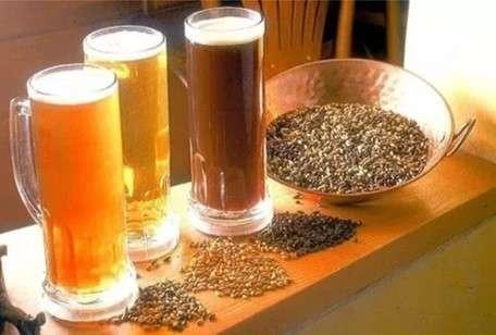 Cerveza artesanal emprendimientos desde casa - 4
