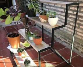 Soporte para planta