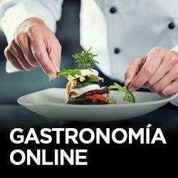 Curso de gastronomia - 0